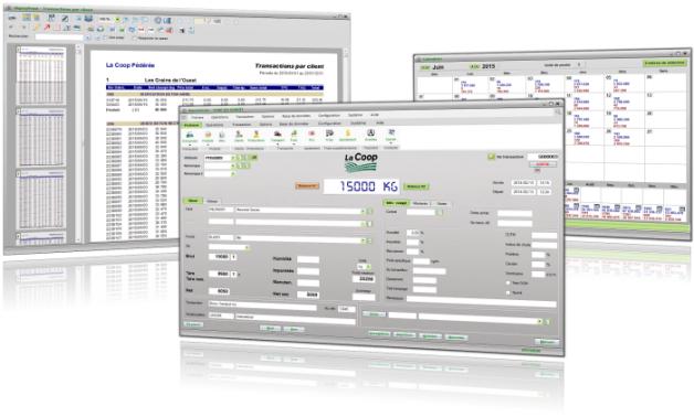 Grain management software